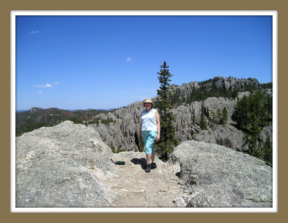 Rose on mountaintop in black hills SD